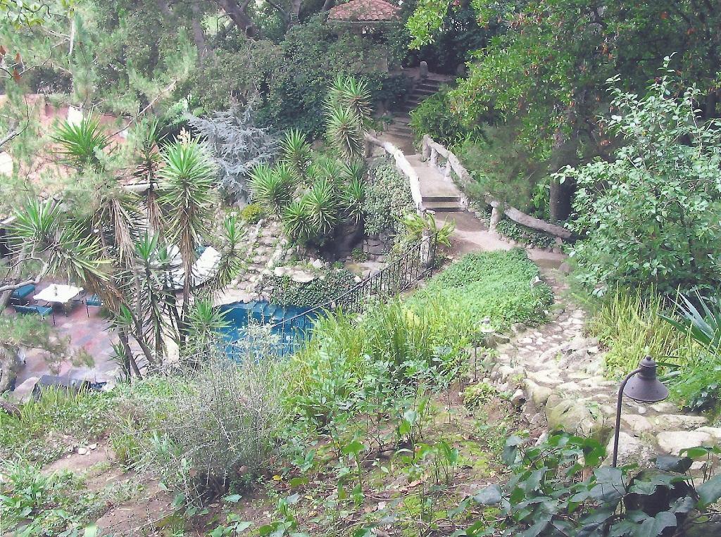 PHOTO Lower Busch Gardens ...